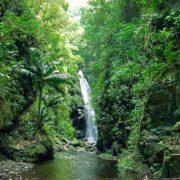 saint vincent Baleine Falls