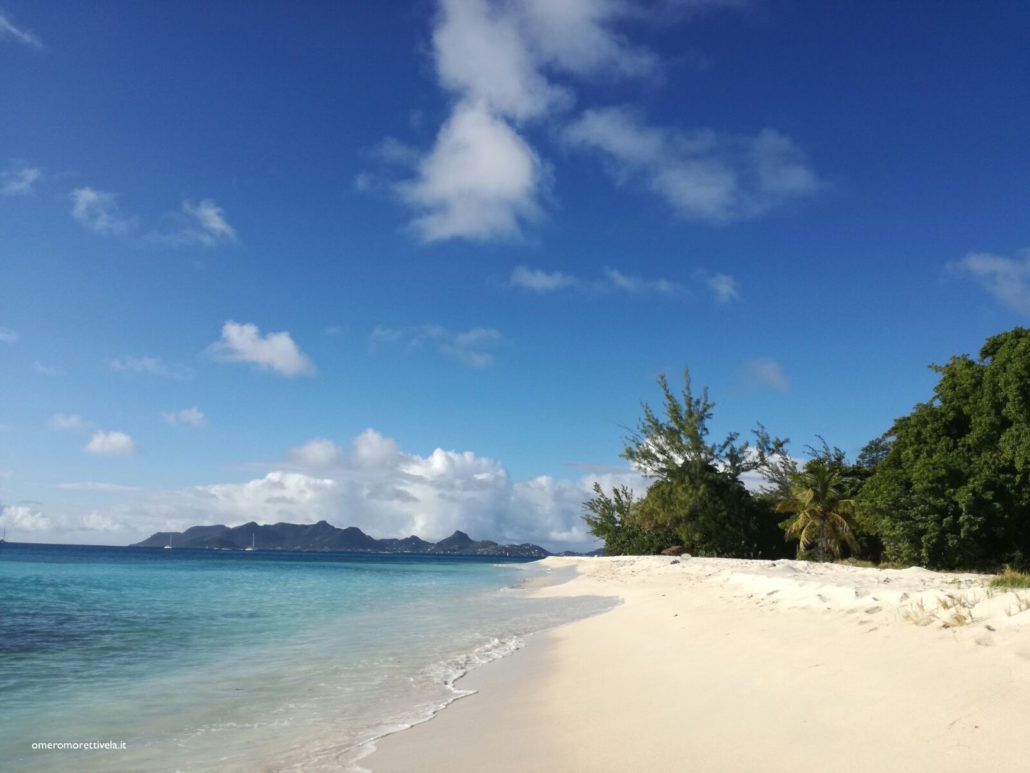 crociere barca a vela grenadine spiaggia psv