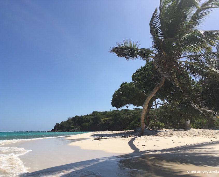 crociere alle grenadine spiaggia tobago cays