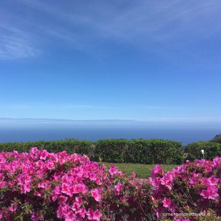 Sao Miguel azalee e oceano