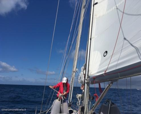 vela d'altura equipaggio