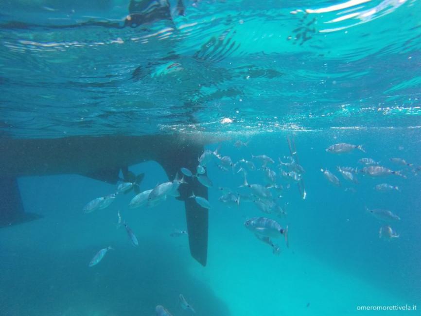 vacanze in barca a vela sardegna corsica snorkeling