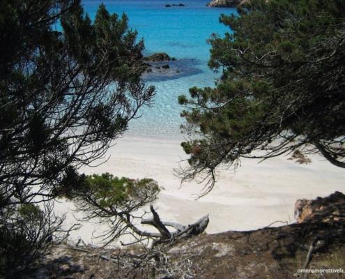 vacanze in barca a vela sardegna spiaggia tra gli alberi
