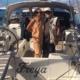 ritratto di famiglia in barca a vela